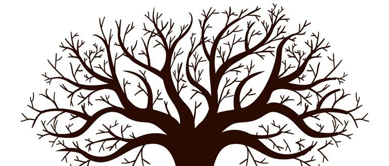 Работа с деревом значений в 1С